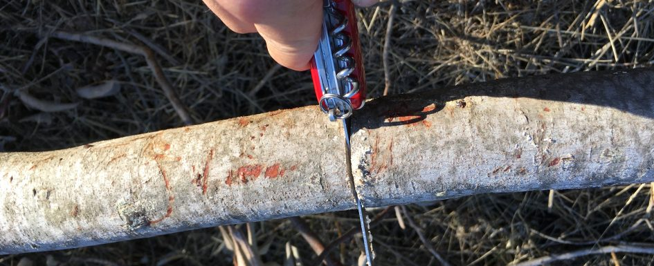 scout knives with saw