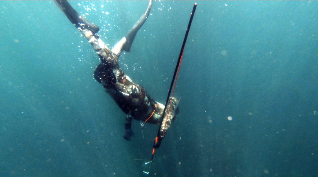 pole spearfishing