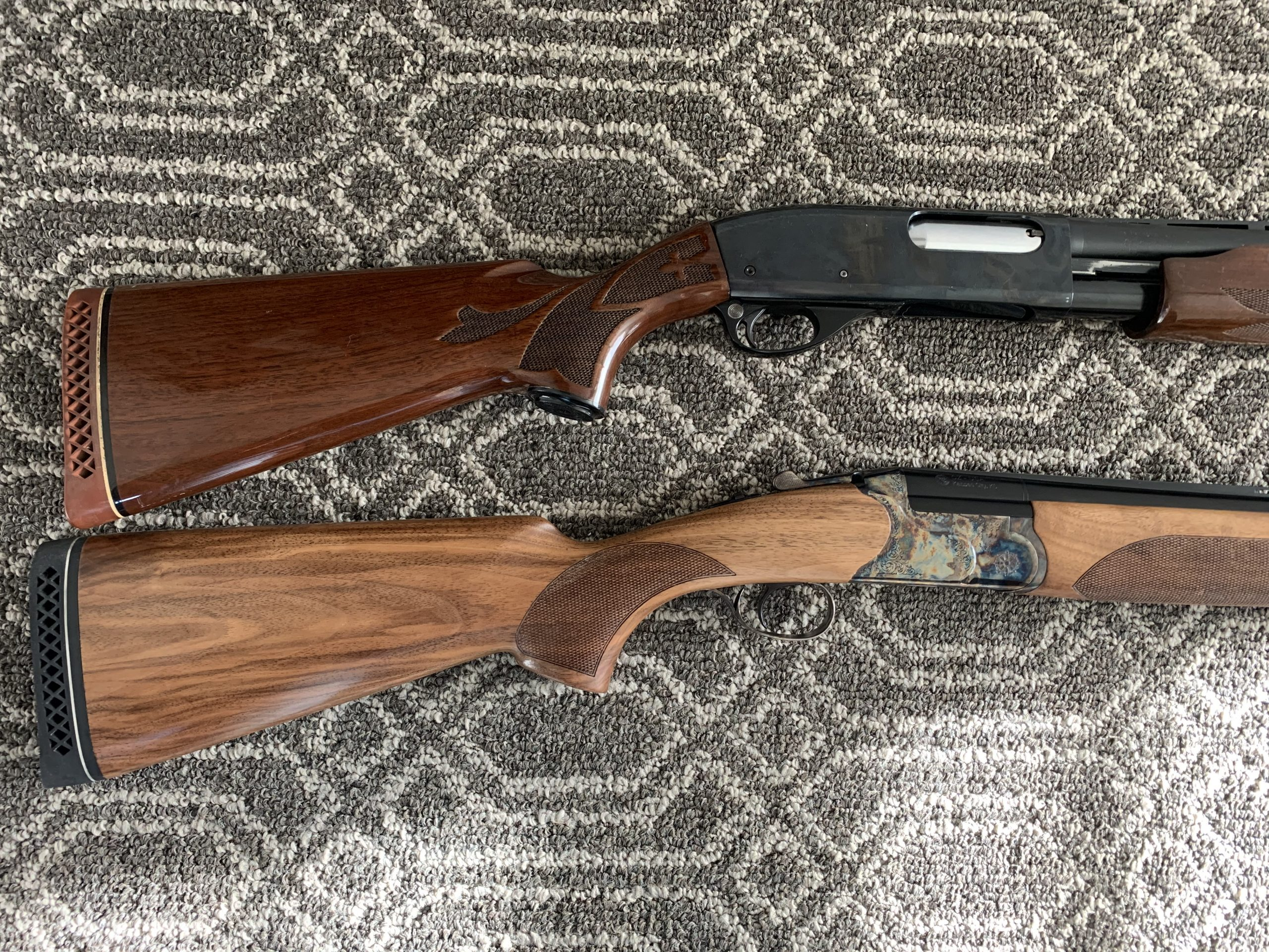 refinished cz woodcock g2 and a remington 760 wingmaster